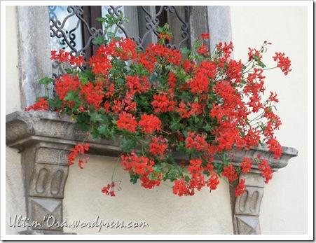Balcone Fiorito2