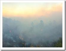 rossanoincendio27.08.2014
